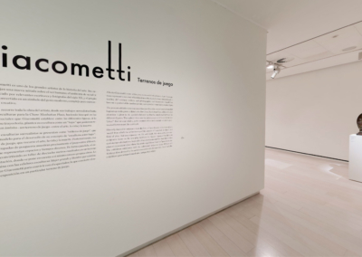 2013_Giacometti_Mapfre_foto01_JMASOC